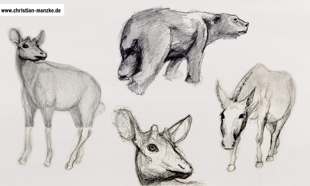 tiere_001