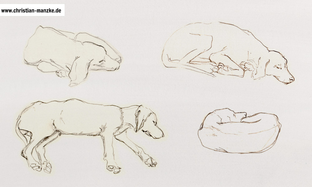 tiere_002